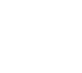 Fresh daily Cakes